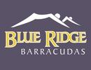 Blue Ridge Barracudas Logo