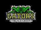 Village Green Gators Swim Team Logo