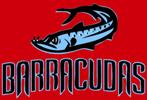 Briarcliff Sagamore Barracudas Logo