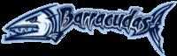 Benington Farrington Swim Team Logo