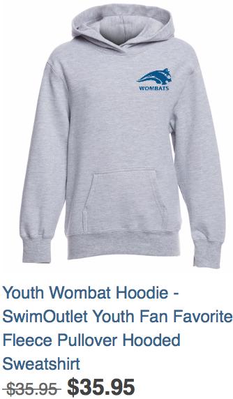 Youth Hoodie Grey
