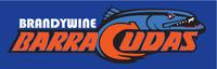 Brandywine Barracudas Logo