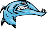 Anderson Mill Barracudas Logo