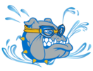 CCHS Swim & Dive Team Logo
