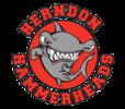 Herndon Hammerheads Logo