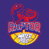 Mid-Michigan Raptor Water Polo Logo